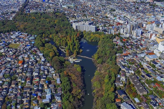 東京 武蔵野