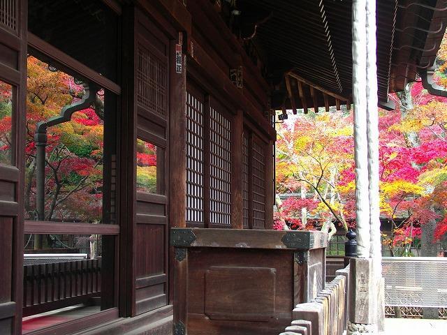 千葉県 松戸市 本土寺