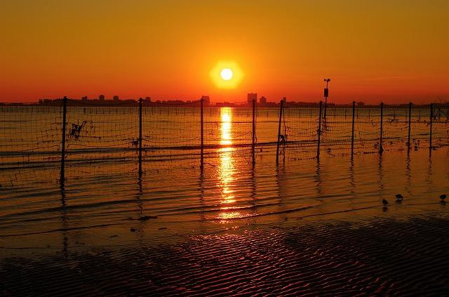 千葉県 船橋市 三番瀬の夕日