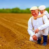 土地 祖父母 孫 農地